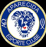 Aparecida segue contratando jogadores conhecidos para a Divisão de Acesso